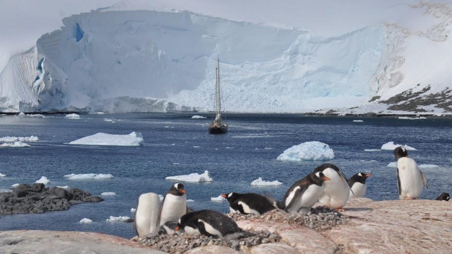 Anne-Margaretha Chileense basis Antarctica