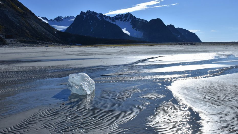 Magdalena fjord Spitsbergen